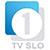 TV Slovenija 1