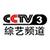 CCTV-3